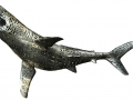 Michael Cardacino_Sculpture_Emptiness of SHARK