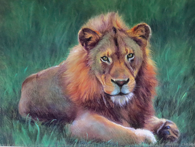 LION AROUND, pastel, 18x22